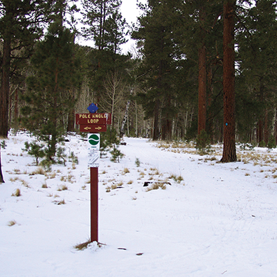 White Mountains, AZ activities: cross-country skiing