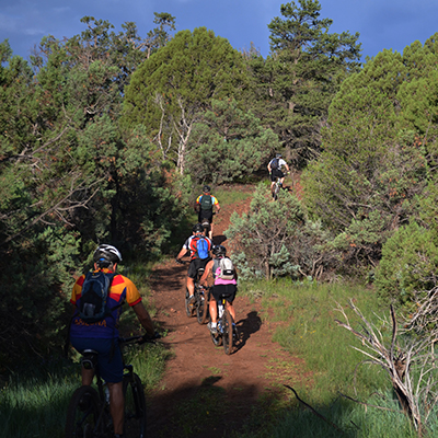 White Mountains, AZ activities: mountain biking